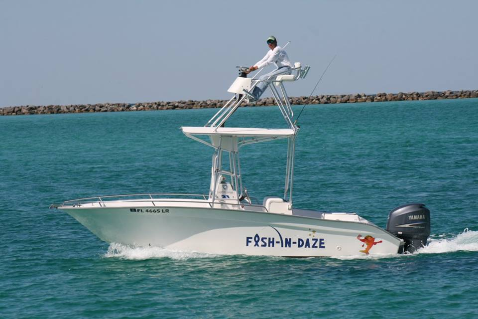 destin fishing charter boat fish-in-daze